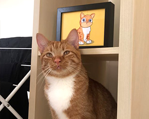 Cartoon Cat Pet Portrait