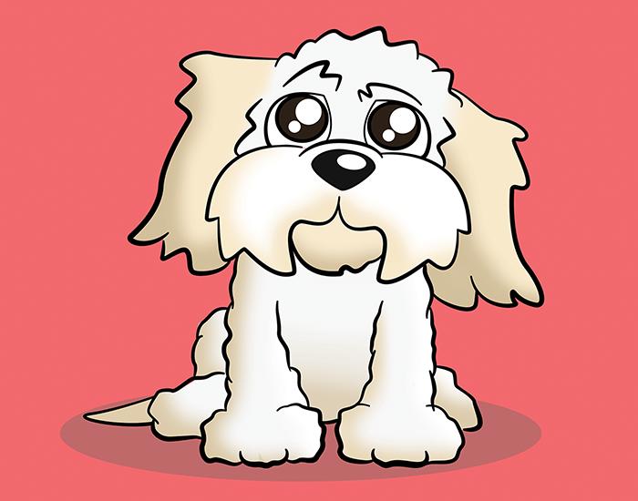 Cartoon Cavachon Pet Portrait