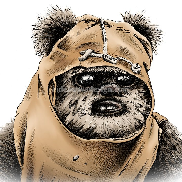 wicket ewok star wars illustration